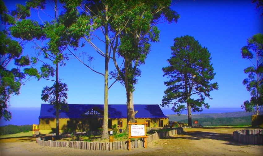 Down to Earth Cafe & Venue at Herolds Bay Resort. Restaurant George Garden Route Western Cape