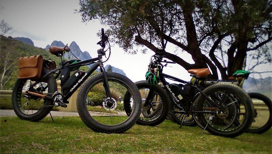 Vinebikes E-Bike Rentals in Stellenbosch Winelands Western Cape