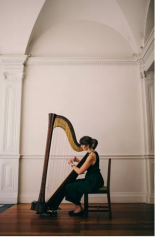 harpNOTED Harp Performance in Cape Town Western Cape
