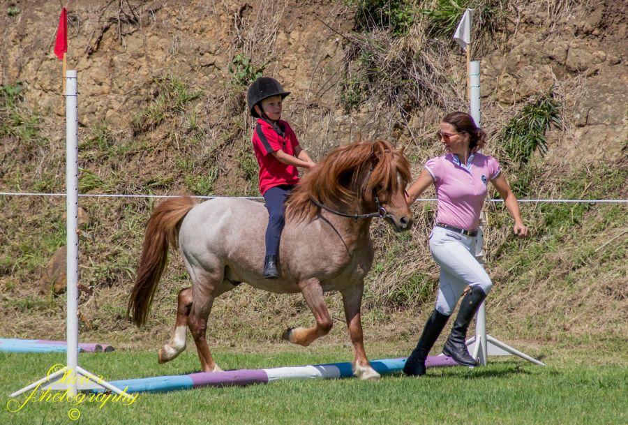 Buckingham Equestrian Centre in Pietermaritzburg KwaZulu-Natal