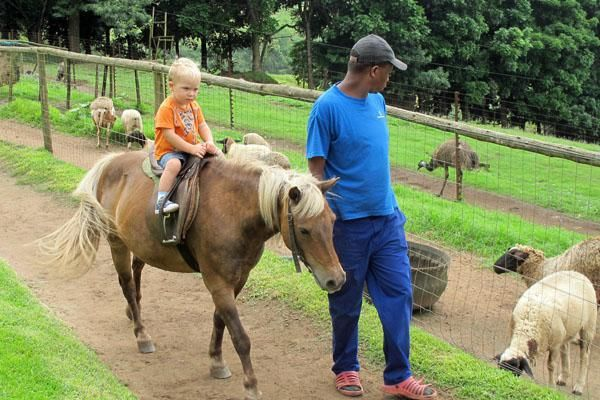 Animal Farmyard Kids Party Venue in Hillcrest KwaZulu Natal