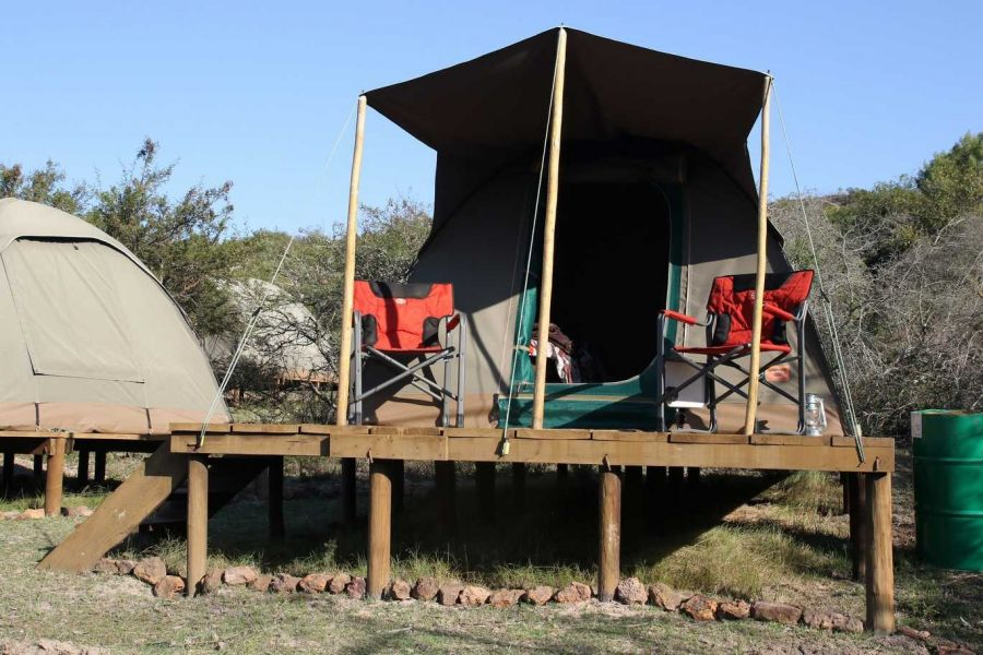 Pabala Game Farm. Accommodation in Loerie Eastern Cape
