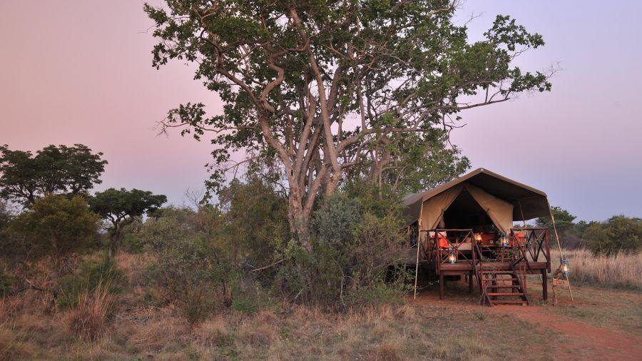 Kwafubesi Tented Safari Camp Accommodation Bela Bela Limpopo