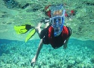 Pro Dive (Port Elizabeth - Eastern Cape)