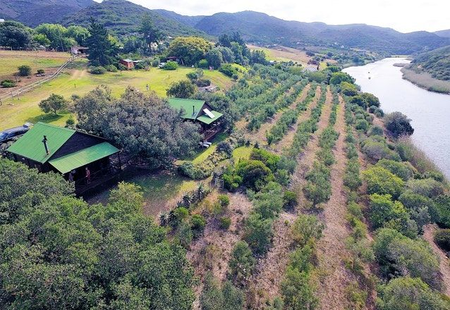 Wild Olive Guest Farm. Accommodation in Stil bay Western Cape