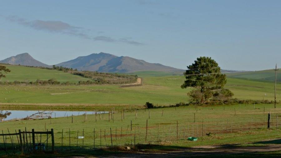 De Skaap (Napier - Western Cape)