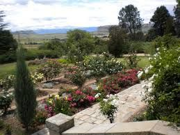 The Rose House Bed and Breakfast. Accommodation in Fouriesburg Free State