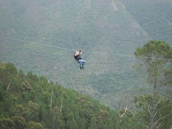 SA Forest Adventures (Cape Town)