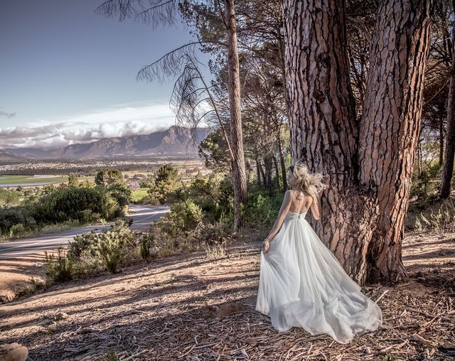 All About Photography in Paarl Winelands Western Cape