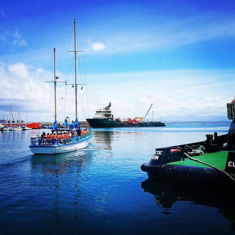 Romonza Boat Trip Activities Mossel Bay Garden Route Western Cape