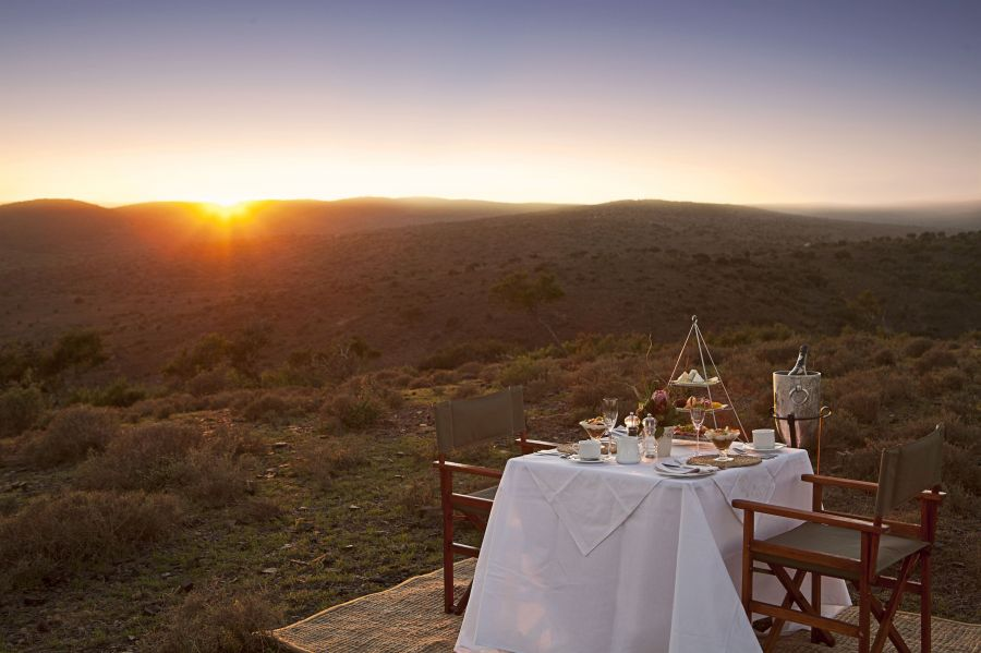 Kuzuko Lodge. Game Reserves & Safaris in Addo Eastern Cape Interior