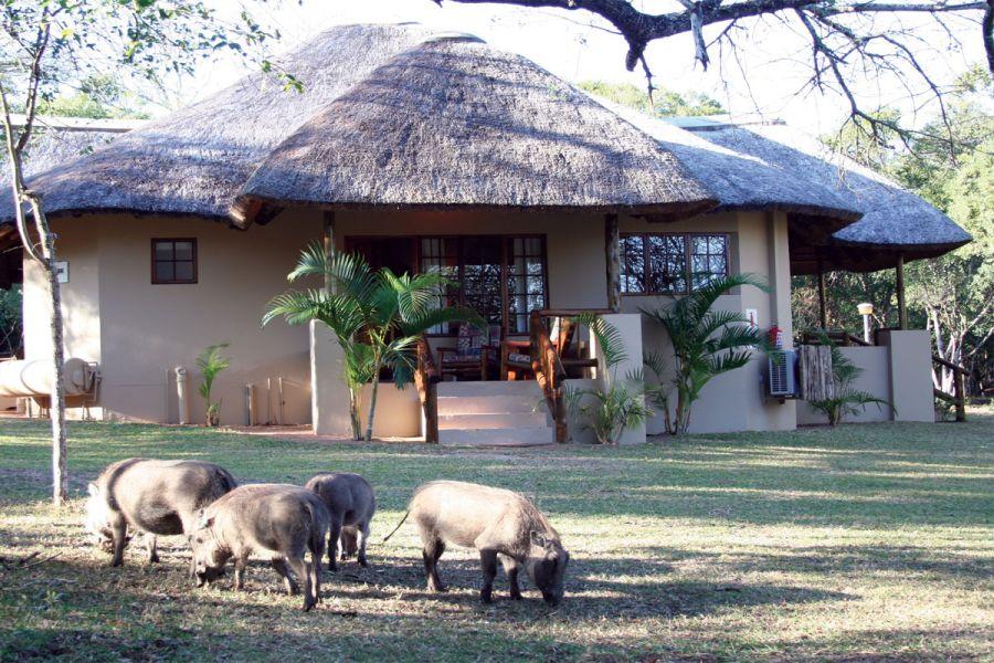 Bonamanzi Game Reserve Accommodation in Hluhluwe KwaZulu Natal