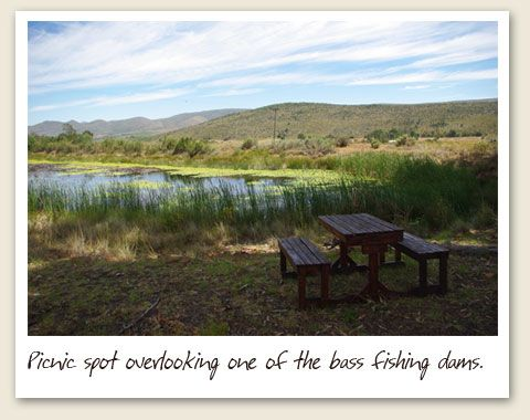 Grootnek Guest Farm. Accommodation in Langkloof Valley Eastern Cape