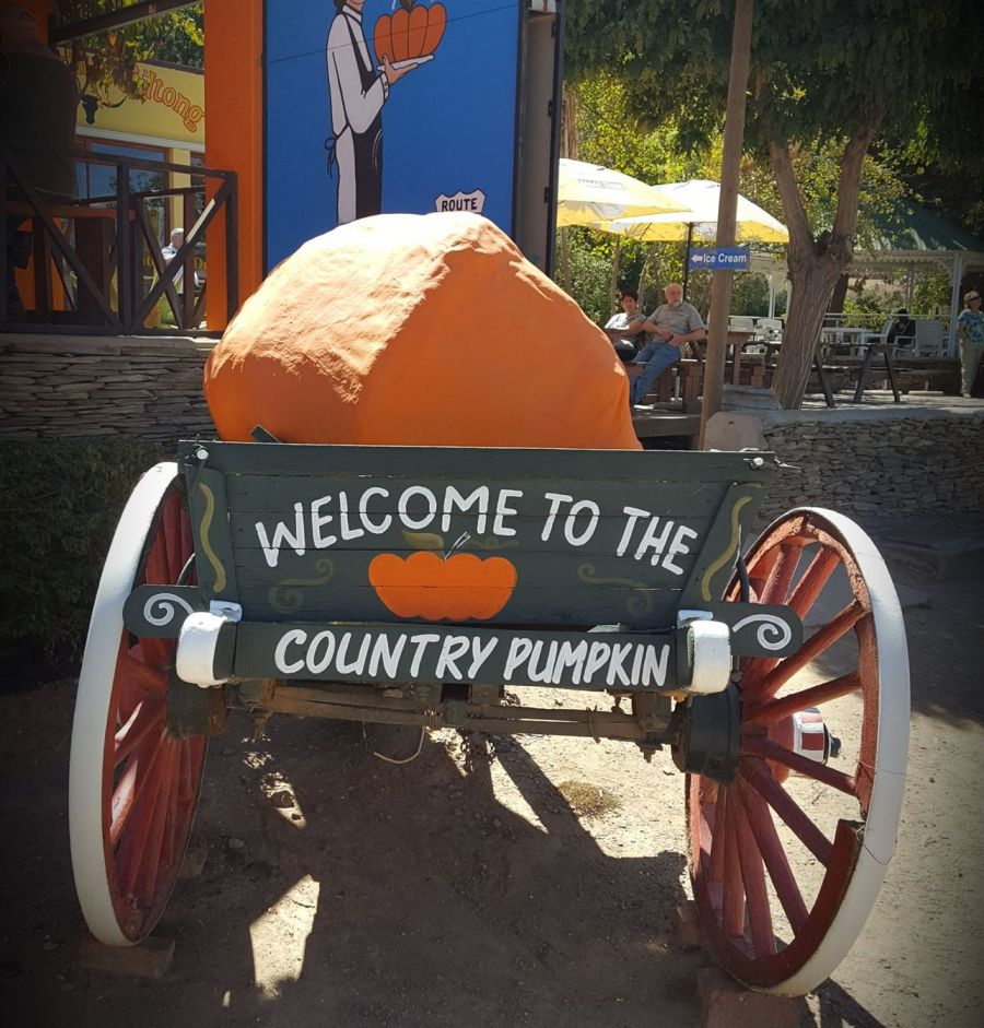 The Country Pumpkin. Farm Stall in Barrydale Western Cape