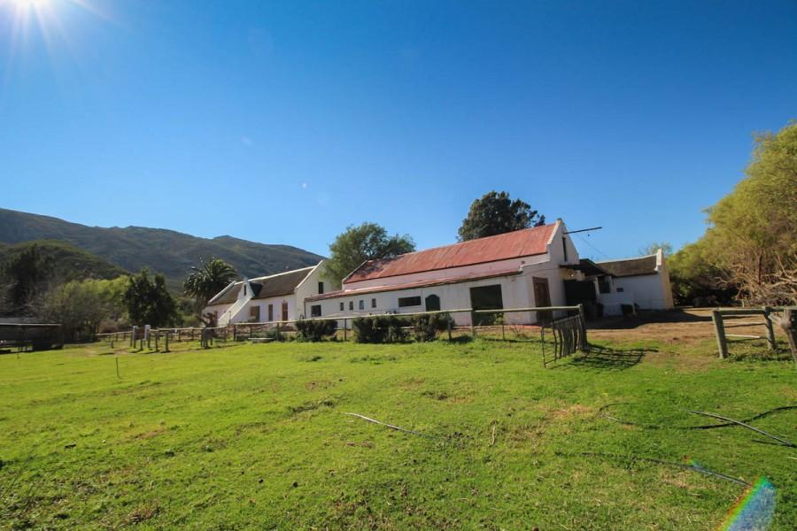 De Bos Guest Farm (Montagu - Western Cape)